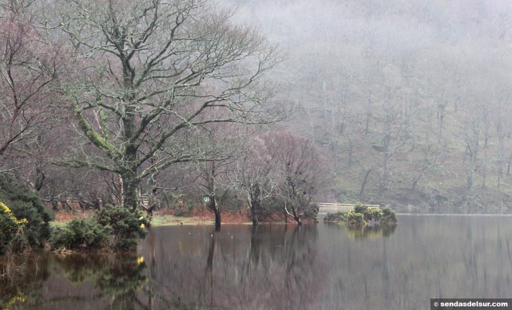 El silencio reina en el Upper lake